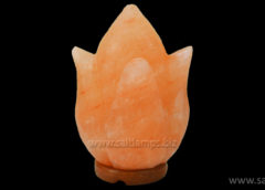 Tulip Shape Salt Lamp